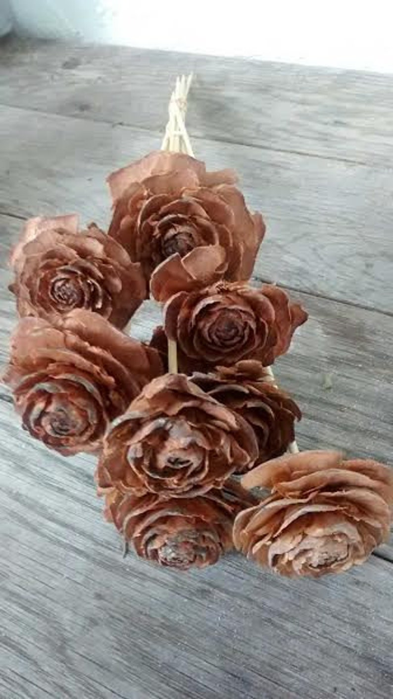 Pinecone Cedar Rose Stems 12 long Perfect For Rustic Country Weddings 10 stems