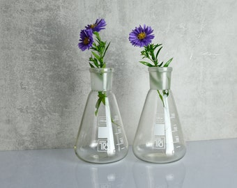 2 x Vase Laboratory Glass Old Glass Vase Glass GDR
