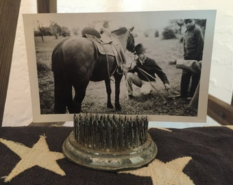 Vintage Horse Photograph Black Beauty Black and White B&W Pipe Smoke Equestrian Stallion Pioneer Park 1941 1940's Decor