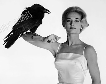 """TIPPI HEDREN 5x7 or 8x10 Photo Print Hollywood 1963 """"The Birds"""" Crow, Vintage Golden Age of Hollywood Publicity Portrait"""