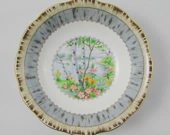 Silver Birch Fruit Bowl, Nappy Bowl, Dessert Bowl, Royal Albert Vintage Bone China, Small Bowl, 5 Inch Bowl