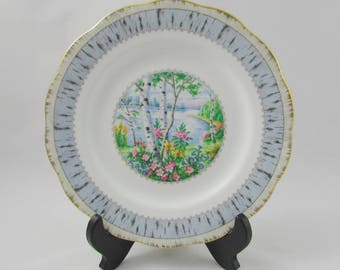 Silver Birch Salad Plate, Luncheon Plate, 8 Inches, Vintage Royal Albert, Single Plate