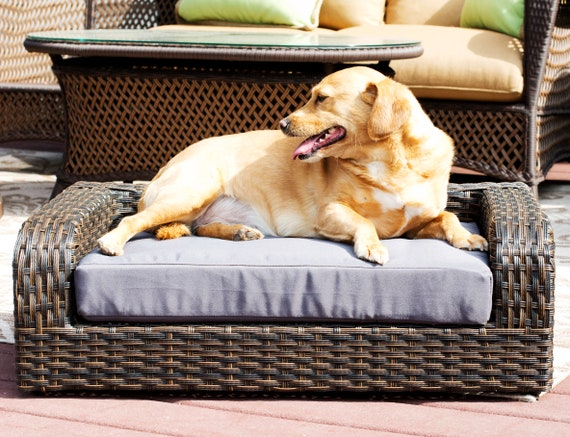 Awesome Rattan Wicker Pet Bed Made Of Woven Palm Stems Of Rattan Indoor Outdoor Sofa Water Resistant Cushion Cover Elegant Pet Bed For Dogs Cats Andrewgaddart Wooden Chair Designs For Living Room Andrewgaddartcom