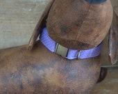 Purple Polka Dot Dog Collar. Medium Dog Collar. Vintage Collar. Retro Collar.