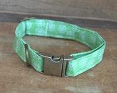 Dog Collar. Fabric Dog Collar. Mint Green Vintage Floral Dog Collar. M/L