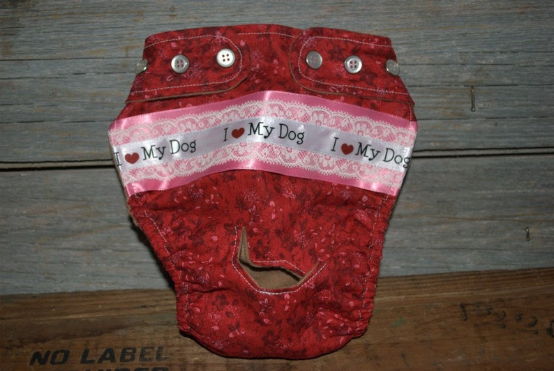 Dog diaper. In season diaper. Dog panty. Red Floral I image 0