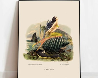 MERMAID BLISS Watercolor and Antique Botanical Lithograph Fine Art Print