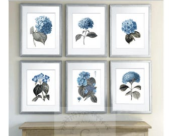 c31882cf8f8 Blue Hydrangea Wall Art Botanical Print Set of 6 Unframed Art Prints