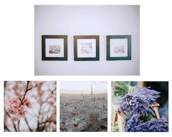 paris j'taime photo trio set // living room art // cherry blossom + lavender eiffel tower skyline france photography // 5x5 8x8 // teri b