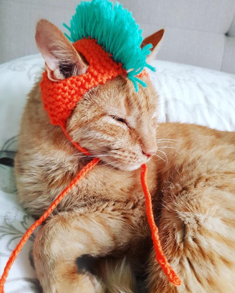 Punk Cat Hat and Pet Accessories