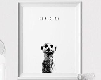 Suricata Wall art Print, Safari Animal, Home Decor, Poster, Graphic Pen, Black and White, Peekaboo animal, Nursery Decor, ArtFilesVicky