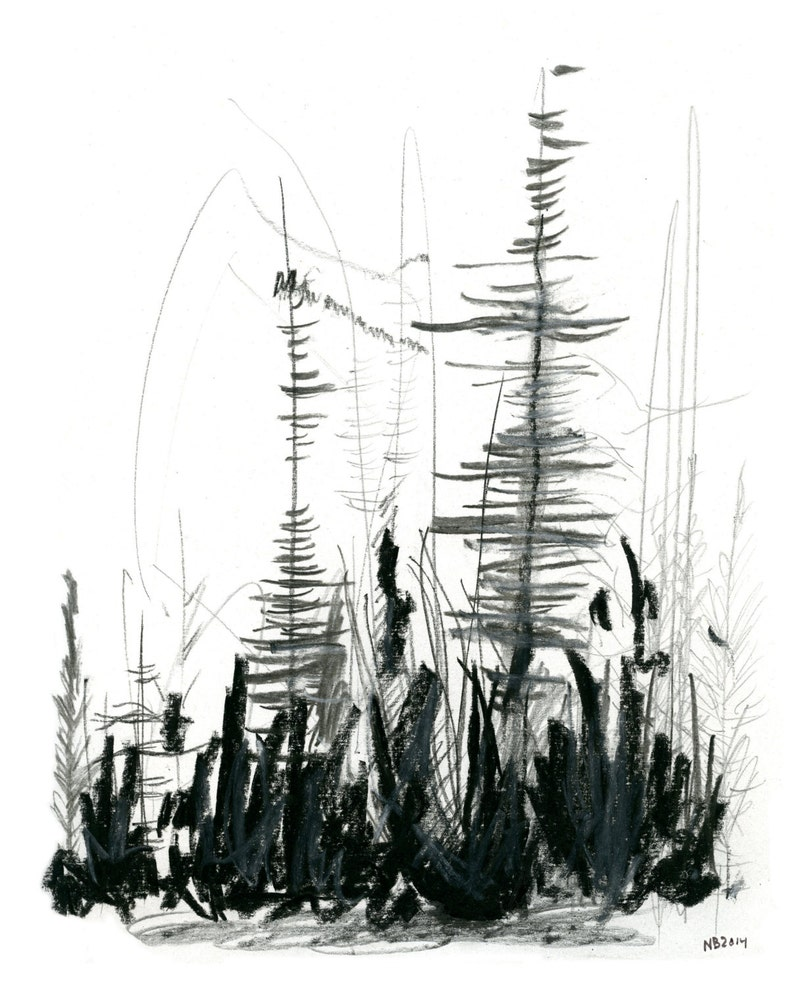 Forest Fire Nature Forest Abstract Mixed Media Digital Print Nature Abstract Trees 8x10 Mixed Media Print