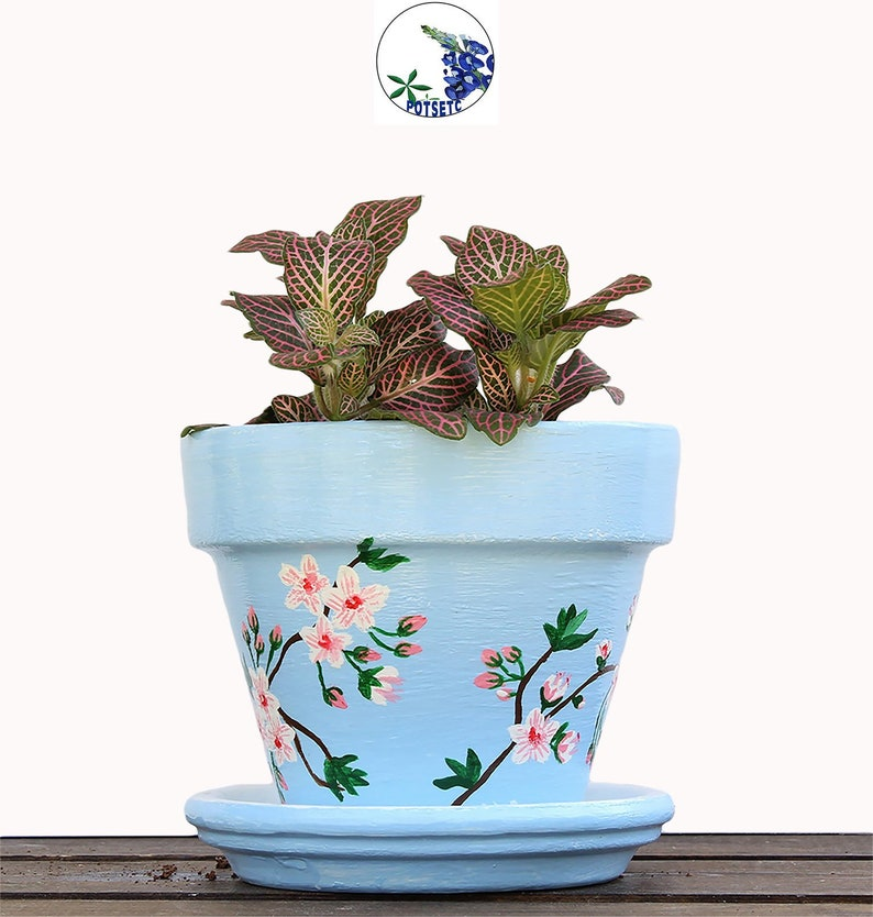 230 & Baby Blue with Cherry Blossoms Painted Flower Pot - Terracotta Planters Hand Painted Clay Pots PotsEtc