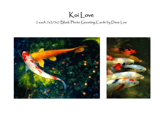 "Set of 4 ""Koi Love"" 7x5 Greeting Cards, Blank Inside, Professionally Printed on Heavy Classic Felt Card Stock, Folded, with Envelopes"