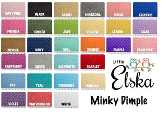 Build Your Own Personalized Minky Blanket, Personalized Name Blanket, Choose Your Colors, Choose Your Size.