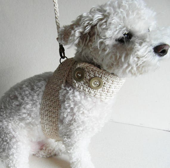 Pet Harness with Matching leash | Etsy
