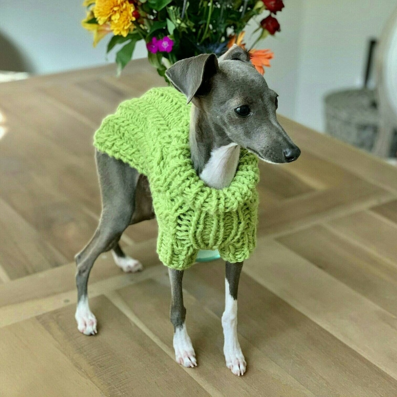 fcea24f64 Cable Dog Sweater Chihuahua Clothes Pet clothing Small