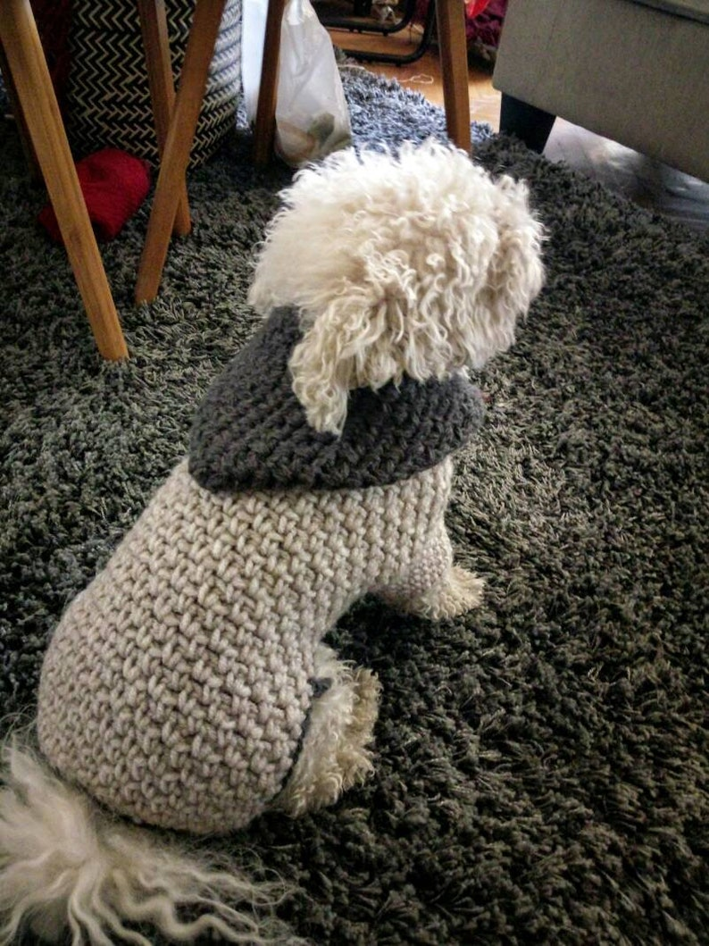 Small Dog Sweater Crochet Dog Clothes Pet Clothing Etsy