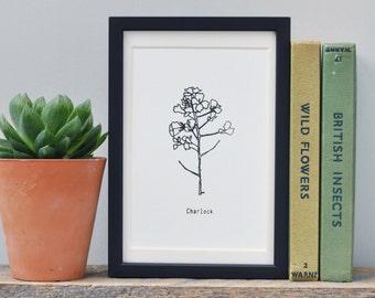 Botanical Illustration Art Print, Plant Screen Print, Botanical Art Print Black and White, Screen Print, Original Print, Wall Art