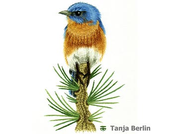 Eastern Blue Bird on Pine Branch Needle Painting Hand Embroidery Kit and PDF File with Colour Work-in-Progress Photos