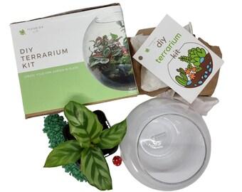 Terrarium Kit DIY - small