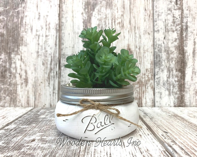 SUCCULENT PLANTS in Pot Mason Jar Mini Half Pint Farmhouse Home Decor Distressed Ball Painted White Rustic House Little Cute Garden Greenery