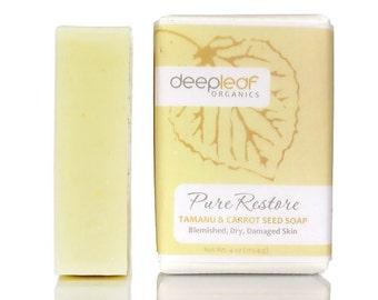 Bar Soap, Ezcema, Soap, Dry Skin Soap, Psoriasis, Organic Soap, Aloe Soap, Moisturizing Soap, Natural Soap, Organic Bath, Vegan Soap