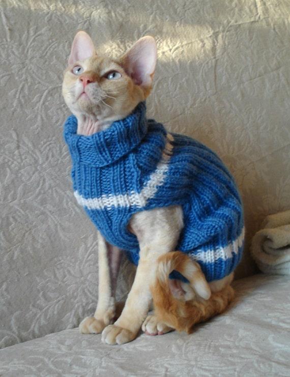 Chat petit chien pull pull veste bleu tricoté à la main avec des rayures sphynx animaux animaux de compagnie devonrex yorkshire terrier laine col