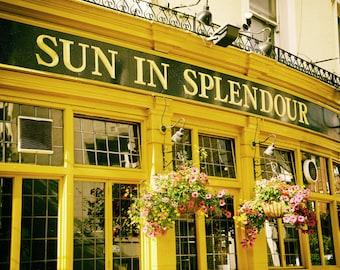 London Pub, London Photography, Sun in Splendour, Notting Hill, Portobello Road, Fine Art Print, Pink Flowers, Yellow, Kitchen Decor