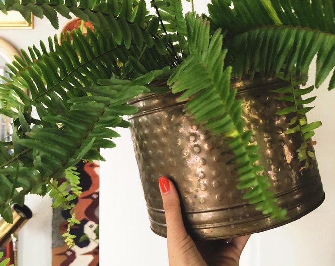 Bohemian Brass Planter / Vintage Solid Brads Plant Holder / MCM Farmhouse Minimalist Home or Wedding Decor