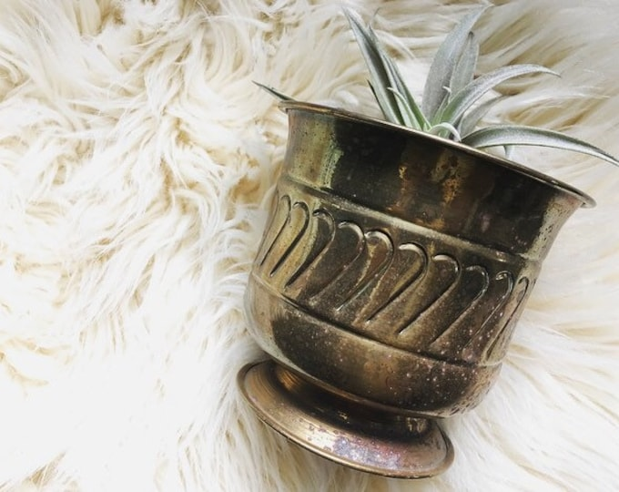 Vintage Brass Planter / MCM Brass Plant Holder / Modern Farmhouse Christmas Decor