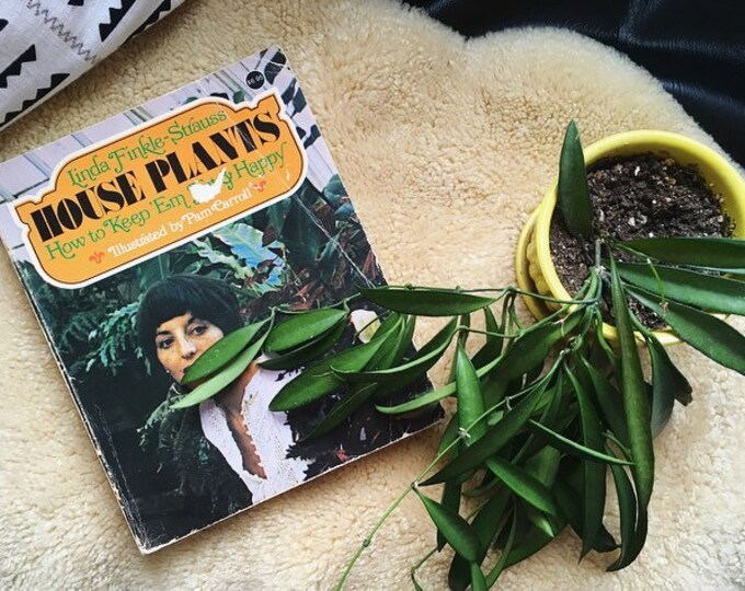 Vintage Houseplants Book / 'House Plants How to Keep Em Fat & Happy' / Illustrated Plant Book 70s