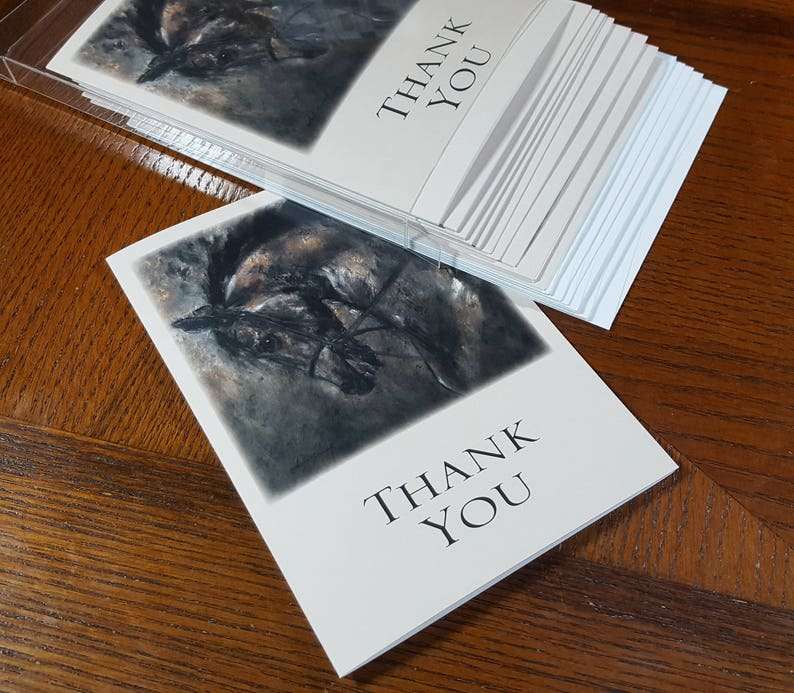 Horse Thank You Cards by Celeste Susany