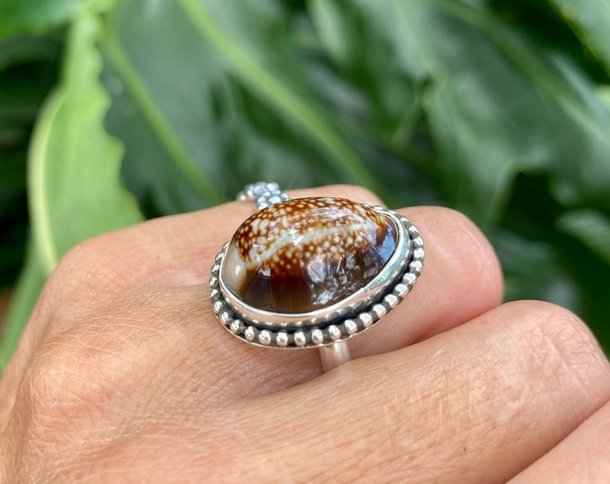 Cowrie Shell Ring, Size 7-9, Sterling Silver, Hawaiian Shell, Snakehead Cowrie, Boho Jewelry, Southwestern, Gypsy, Ocean Inspired