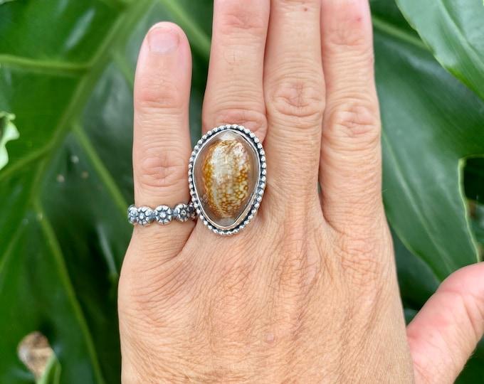 Cowrie Shell Ring, Size 7-9, Sterling Silver, Hawaiian Shell, Snakehead Cowrie, Boho Jewelry, Southwestern, Gypsy, Ocean Jewelry