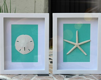 "Set of 2 or 3: Sand Dollar and Starfish Wall Art Home Decor 8""x10"" White Shadow Box Frame Teal Beach Coastal Home House Warming Gift"