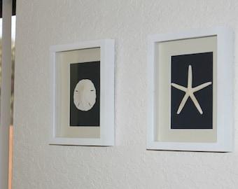 "Set of 2 or 3: Sand Dollar & Starfish Wall Art Home Decor 8""x10"" White Shadow Box Frame Ocean Nautical Coastal Beach Home House Warming Gift"