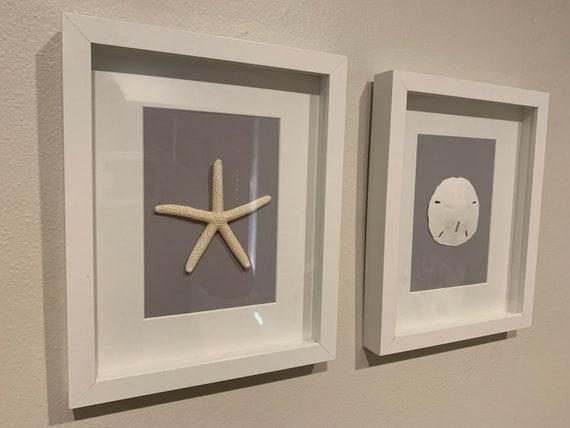 Set Of  Sand Dollar And Starfish Wall Art Home Decor Etsy