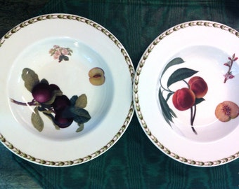 2 NEW Queens China Royal Horticulture Fruit Peach, Pear,Plum, Apricot Soup Salad Bowls (10 Avail)