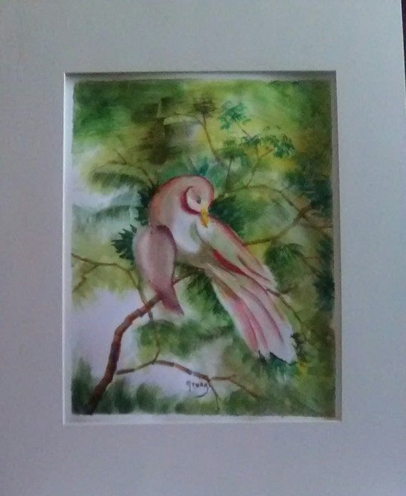 Pink Dove bird painting ,Print from My watercolor original painting,living room art decor,art print,Mother's day gifts,#194