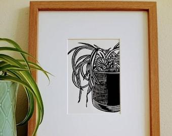 Spider Plant original handmade 5x7 unframed print. Handcarved and handprinted. Houseplant art, plant art, plant print, gallery wall art.