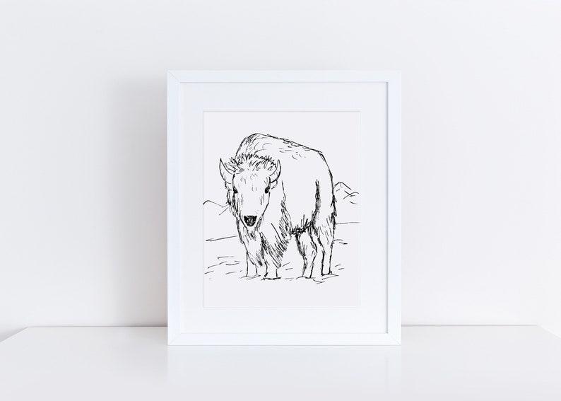 Bison Art Print / Buffalo Art Print / Black and White Wall Art image 0