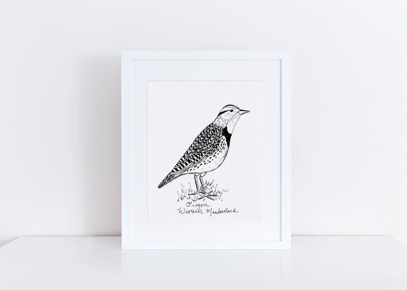 Oregon Meadowlark State Bird Art Print Oregon Decor Meadowlark Drawing Oregon Gift Black And White Bird Drawing Pacific Northwest