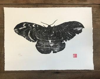 Moth woodblock print, Large woodcut, water, ripples, nature, printmaking,  wood wall art, print, wood grain, original artwork