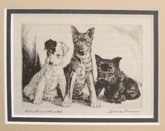 "1936 Matted Dog Print, Diana Thorne ""Situations Wanted"" Dog Etchings - Puppy art, Dog Wall Art, Vintage Dog Lover Gift"