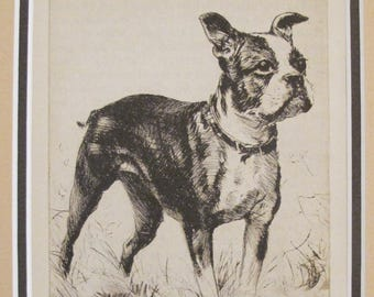 "1936 Matted Dog Print, Diana Thorne ""Made in America"" Boston Terrier Dog Etchings - Puppy art, Dog Wall Art, Vintage Dog Lover Gift"