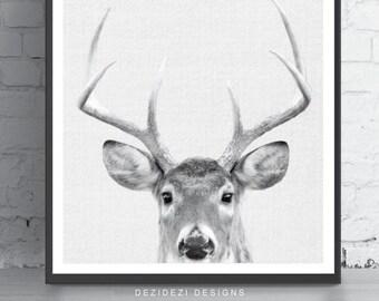 Gift, Printable Gift, Deer Print, Home Decor, Woodland Nursery, Animal Print, Deer Poster, Deer Head, Woodland Animals, Deer Antler
