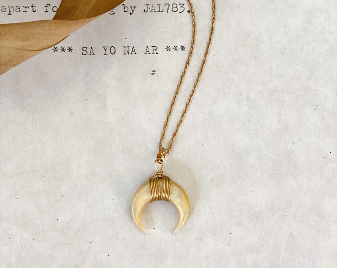 Crescent Moon Shell