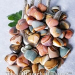 Polychrome Jasper Hearts, Royal Savannah Jasper, Healing Crystals and Stones, Witchcraft Crystals, Witchcraft Supply, Wicca