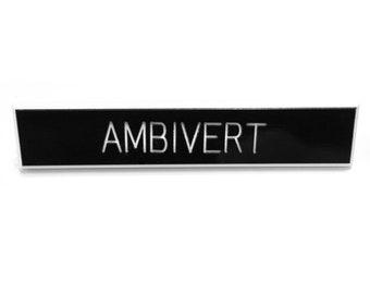 Ambivert Pin